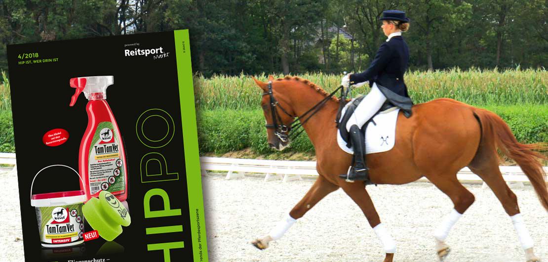 HIPPO-Magazin