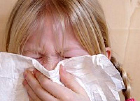 Viren oder Bakterien - Was ist eigentlich der Unterschied?