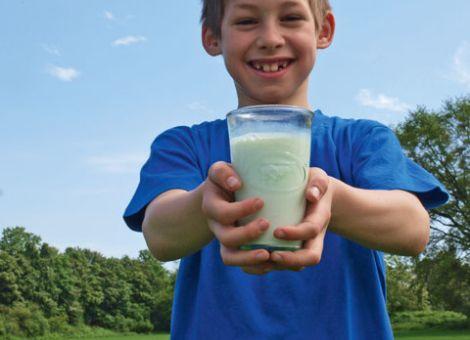 Wie werden Milchprodukte am besten gelagert?