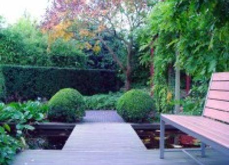 Schöner Garten von Anfang an
