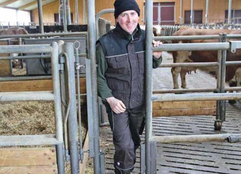 Fluchtmöglichkeiten im Rinderstall schaffen