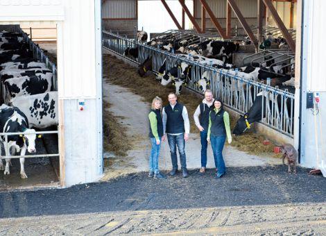 Luft, Licht und Auslauf für Kühe im Betrieb Hooß