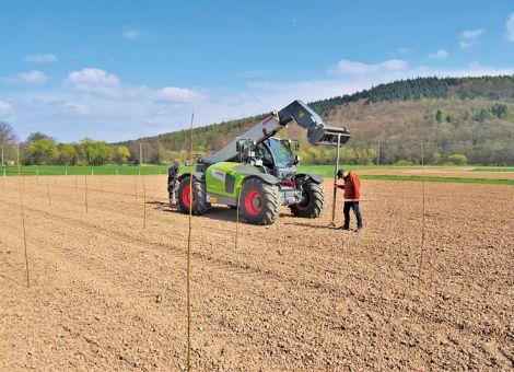 Neue Demonstrationsfläche schnellwachsender Baumarten