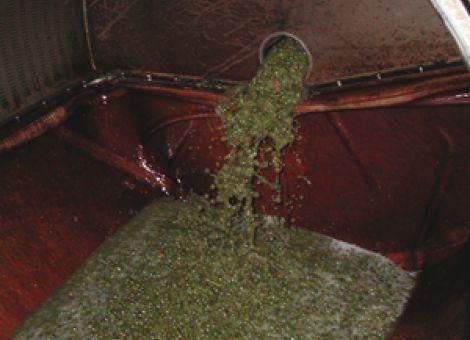 Wie wirkt sich die LBG-Satzung auf den Weinbau aus?
