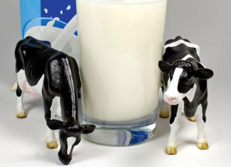 Milchpreise in der EU steigen nicht mehr