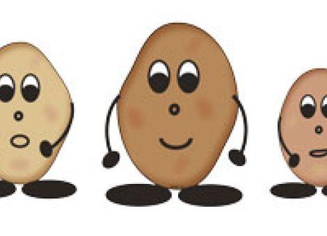 Kartoffelbrei: Hände weg vom Pürierstab!