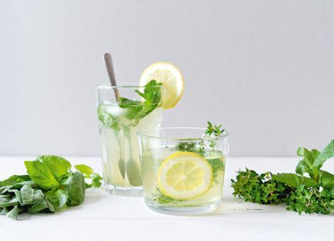 Kräuter-Zitronen-Sirup