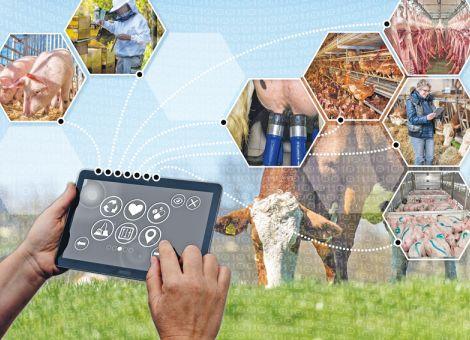 Digitalisierung auf tierhaltenden Betrieben