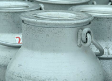 Nachweis der Milchquote ist nicht mehr nötig