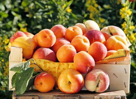 Feine Früchte mit Pelz
