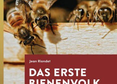 Das erste Bienenvolk