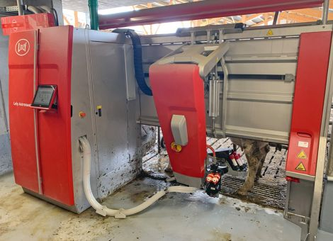 Landwirtschaft 4.0: Melken mit dem Roboter hautnah erleben