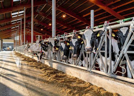 Investive Förderung in der Landwirtschaft