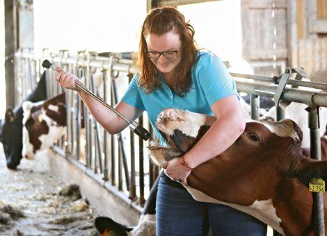 Interessante Produkte zur Milchvieh- und Kälberhaltung