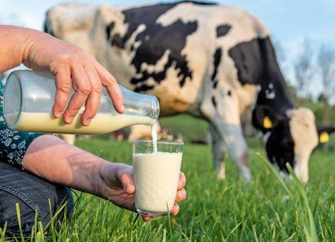 Schmal hofft auf Imagewandel für die Milch