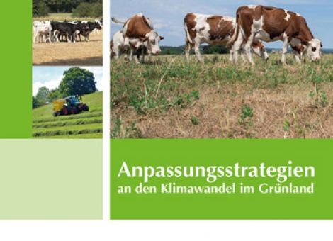 Anpassungsstrategien an den Klimawandel