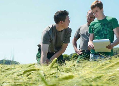 Junglandwirteförderung ausbauen