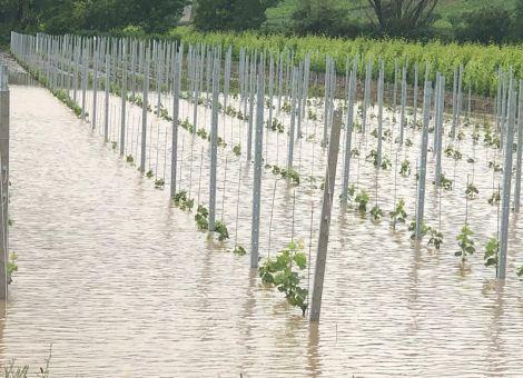 Schäden durch Hagel und Starkregen