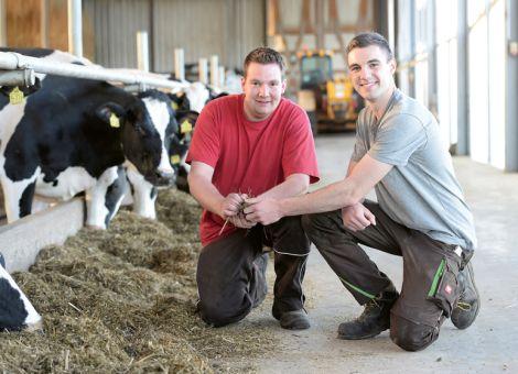 Die Futteraufnahme bei Kühen im Blick behalten