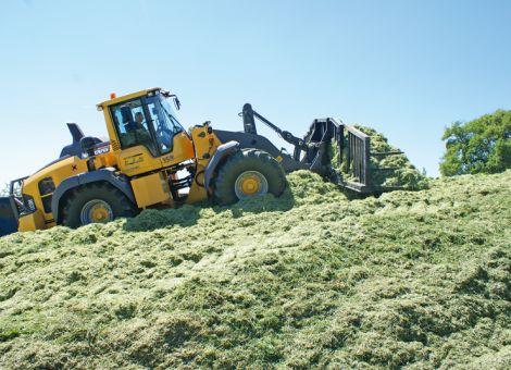 Grassilagen in Rheinland-Pfalz: sehr viel Masse, wenig Klasse