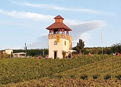 Pertelturm bei Saulheim ausgezeichnet