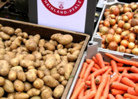 """Agrarmarketing nach dem """"Aus"""" für die CMA"""