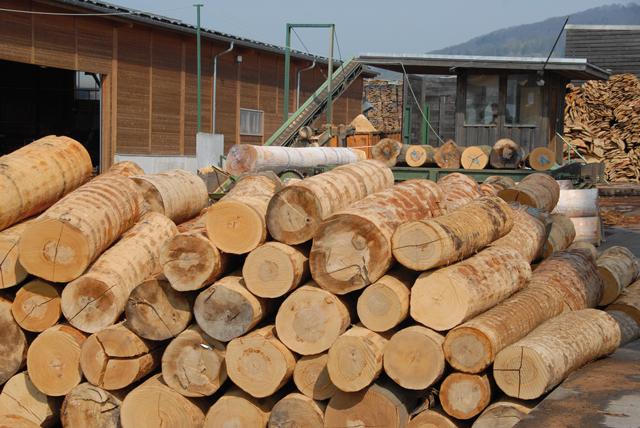 Berühmt Steigende Holzpreise | Jagd, Forst und Natur &MK_58