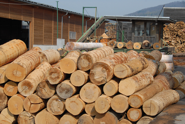 Fabelhaft Steigende Holzpreise | Jagd, Forst und Natur @EV_09