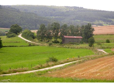 Löllbach Weg